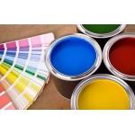 AYASHI. Краска для изделий из мягкого ПВХ и резины , колеровка в любой цвет RAL, 100г